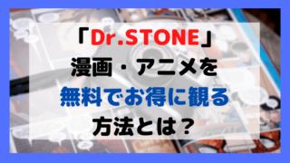Dr.STONEをお得に観る方法