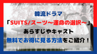 SUITS/スーツ~運命の選択~をお得に視聴する方法